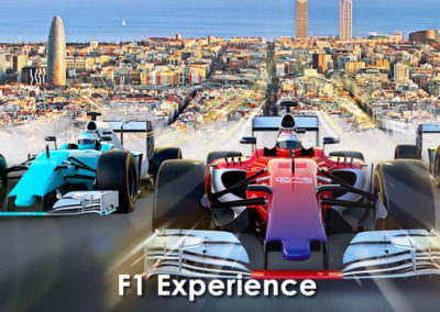 F1 Experience